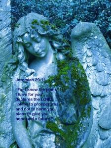 angel-422535