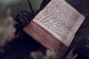 book-1210029